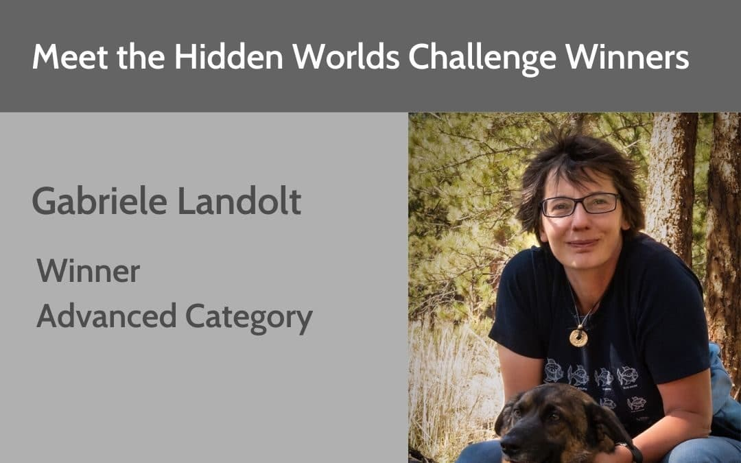 Hidden Worlds Challenge Winner – Advanced Category