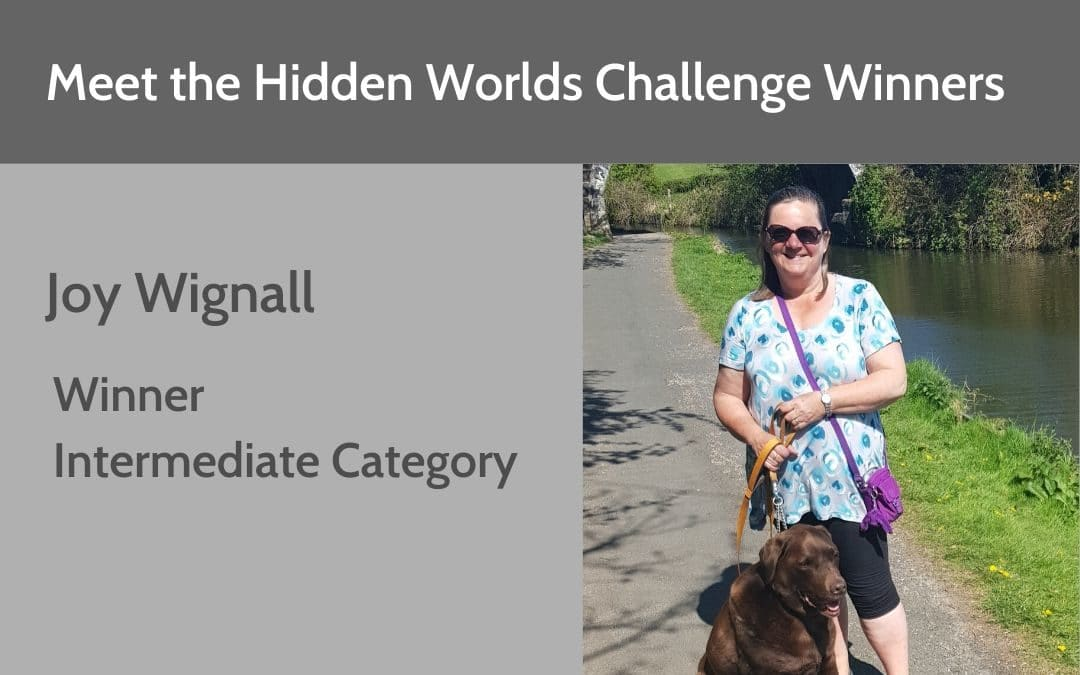 Hidden Worlds Challenge Winner – Intermediate Category