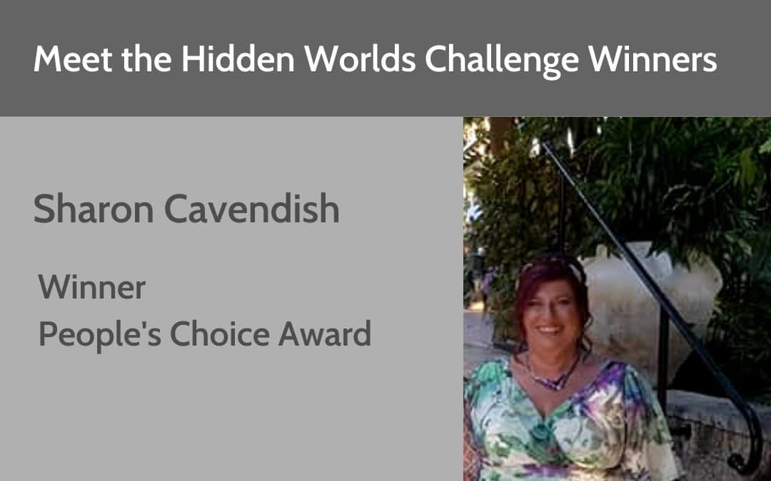Hidden Worlds Challenge Winner – People's Choice